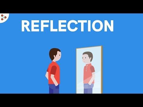 Reflection of Light | Don't Memorise
