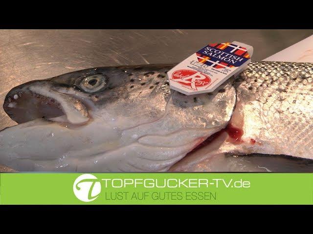 Wie beizt man einen (Schottischen Wild-) Lachs?   Topfgucker-TV bei Sternekoch Biedlingmaier