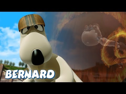 Bernard Bear | Skater AND MORE | 30 min Compilation | Cartoons for Children