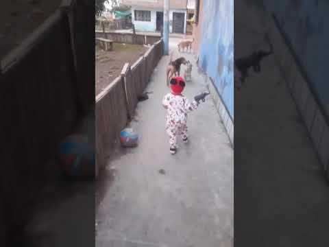 Глюк в Матрице : мяч из ниоткуда