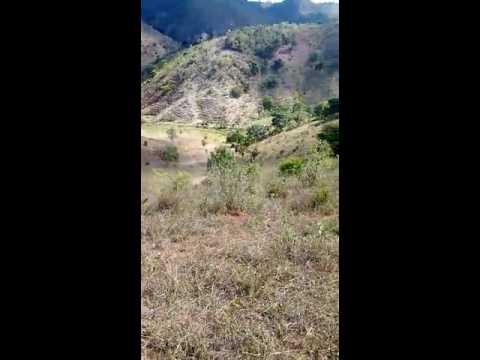 Charlis trilhas mata verde(22)