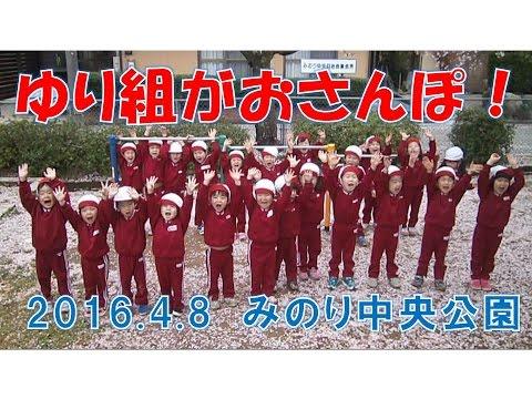 はちまん保育園(福井市)みのり中央公園へゆり組(4歳児年中)がお散歩!桜の花びらに大喜び!