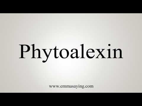 How To Say Phytoalexin