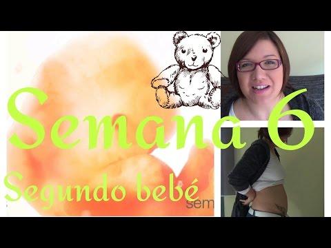 Semana 6 de embarazo | Pequeño sangrado |