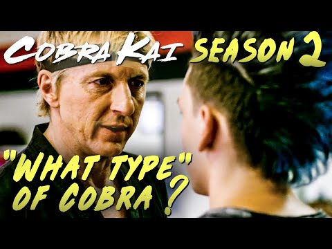"Cobra Kai Season 2 Sneak Peek Response + Breakdown ""What type of Cobra ?"""