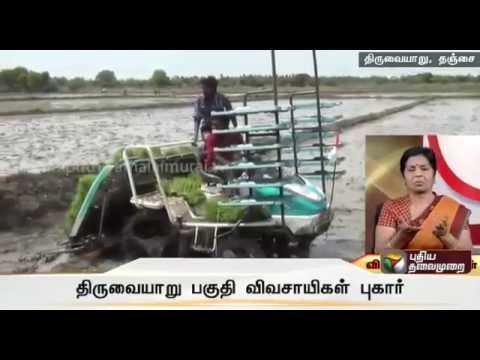 Thiruvaiyaru-farmers-complain-of-irregularities-in-Kuruvai-Crop-Cultivation-special-scheme