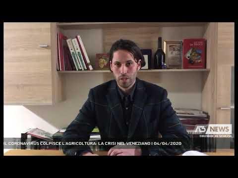 IL CORONAVIRUS COLPISCE L'AGRICOLTURA: LA CRISI NEL VENEZIANO | 04/04/2020