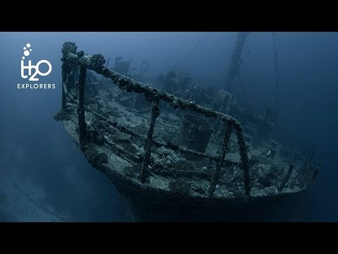 Diving Machchafushi Wreck AKA MS Kudimaa (HD) - South Ari Atoll, Maldives