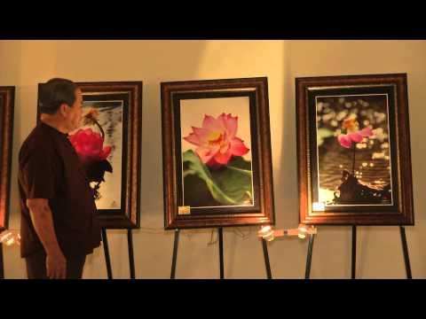 Sen Hồng Đất Việt - Đời Sen 15