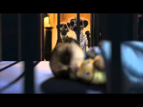 Compare the meerkat -- Daily life with Baby Oleg