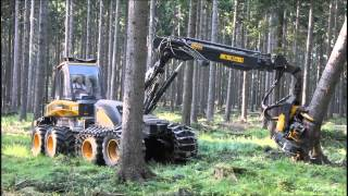 Look How Fast This Machine Can Take Down A Tree!