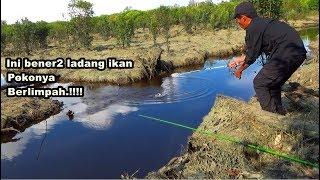 PESTA STRIKE !! Disini Bener2 Ladang Ikan