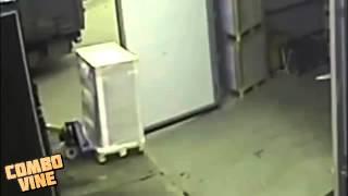 lustige_videos