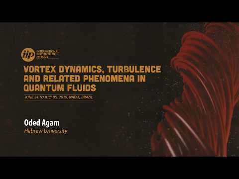 The Internal Structure of Vortices in Bosonic Superfluids and its Implications - Oded Agam