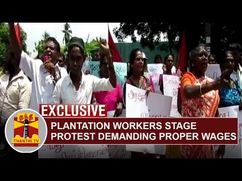 Sri-Lanka-Exclusive-Plantation-workers-stage-protest-demanding-Proper-Wages-Thanthi-TV