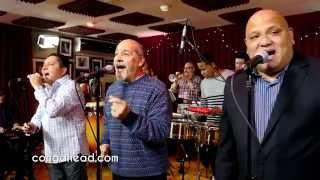 Cascante Spain  city photos : Spanish Harlem Orchestra performs This is Mambo