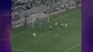 Jogo disputado no dia 31/08/1994, em Madrid. Os gols do Palmeiras foram marcados por Rivaldo e Evair. Pelo Real Madrid...
