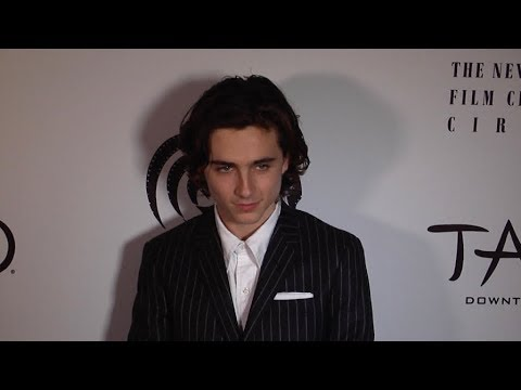 Timothee Chalamet at 2017 New York Film Critics Awards