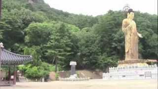 Cheongwon-gun South Korea  City new picture : Beopjusa Temple, South Korea