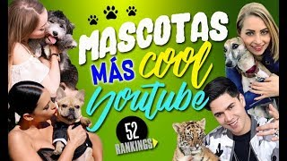 Video LAS MASCOTAS MÁS COOL DE YOUTUBE 2018 - 52 Rankings MP3, 3GP, MP4, WEBM, AVI, FLV Desember 2018