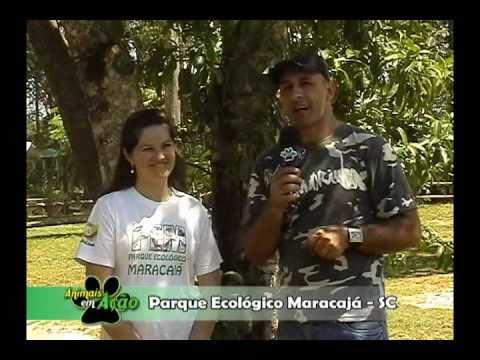 Parque Ecológico de Maracajá Parte 2 - Programa Animais em Ação