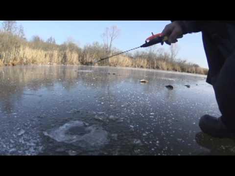 как правильно ловить окуня на озере