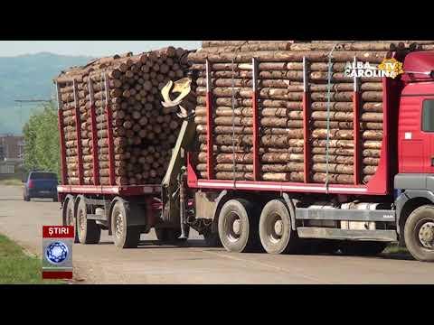 Percheziții la Holzindustrie Schweighofer