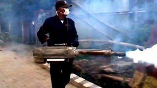 Video Mosquito War PulseJet Fogging Machine Gun DBD Prevention MP3, 3GP, MP4, WEBM, AVI, FLV Oktober 2018