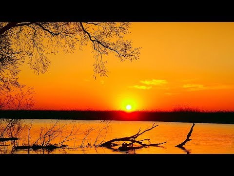 Music For Sleeping, Relaxing Music, Meditation Music, Sleep Music, Calm Music , Study Music, ☯1921