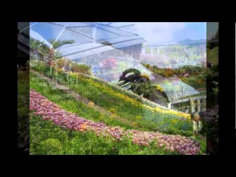 Райский сад проект Эдем в графстве Корнуолл. Британия.