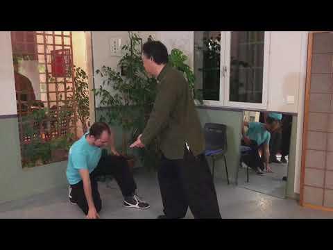 Xingyi Quan - prendre appui sur son adversaire
