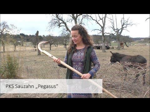 Der Sauzahn: Lieber den Boden lockern statt umgraben