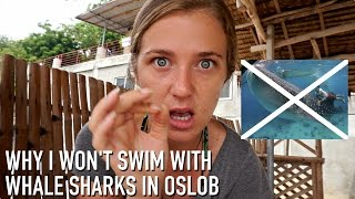 Oslob Philippines  City pictures : WHY I WON'T SWIM WITH WHALE SHARKS IN OSLOB, PHILIPPINES