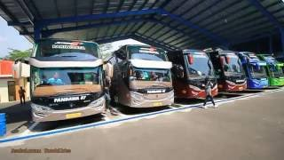 Video Perang Telolet Semua Bus Premium Class Pandawa87 MP3, 3GP, MP4, WEBM, AVI, FLV Juli 2018