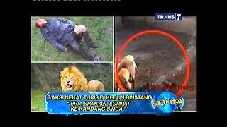 Video On The Spot - 7 Aksi Nekat Turis di Kebun Binatang MP3, 3GP, MP4, WEBM, AVI, FLV September 2018