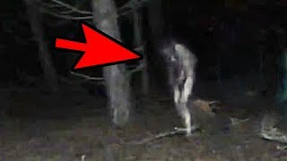 Video 5 Mysterious Creatures Caught On Camera : Top 5 STRANGE Creatures MP3, 3GP, MP4, WEBM, AVI, FLV Maret 2019