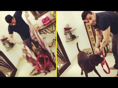 Karan Patel Celebrates Holi with Naughty Patel