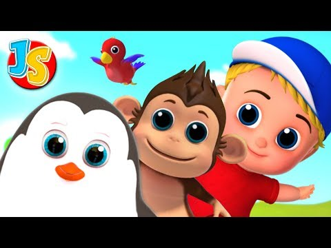 Animal Song For Children | Nursery Rhymes and Kids Song By Junior Squad
