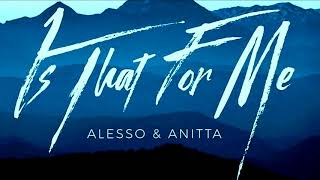 Alesso & Anitta - Is That For Me (Verssaly Brazil reMix)..