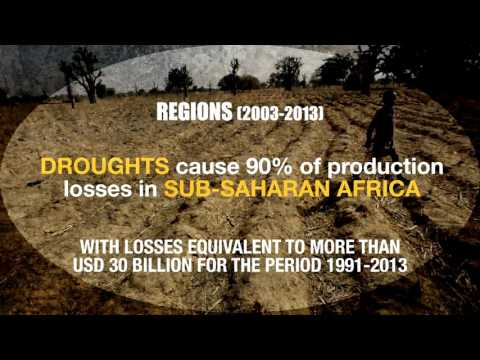 The impact of disaster on agriculture and food security