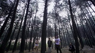 Download lagu Barong Pulang Kampung Mp3