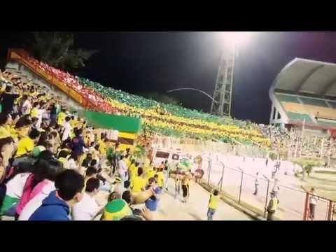 Hinchada del atlético bucaramanga - Fortaleza leoparda Sur - Fortaleza Leoparda Sur - Atlético Bucaramanga