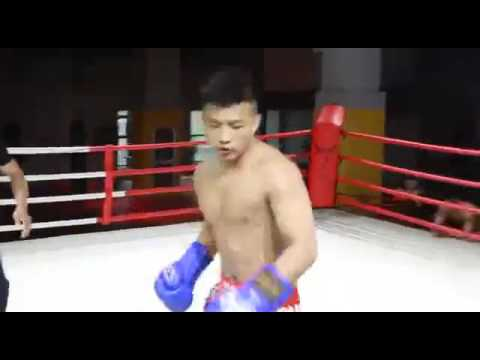 Chinese Traditional Martial Art Tai chi VS Chinese Sanshou (Real Fight)