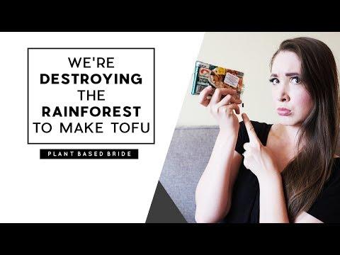 WE'RE DESTROYING THE RAINFOREST TO MAKE TOFU // VEGAN MYTH BUSTER EPISODE TWO // PLANT BASED BRIDE