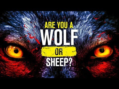 Are You A WOLF OR A SHEEP? - New Motivational Video 2018