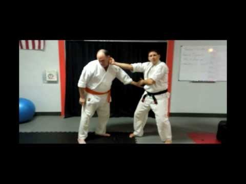 Purple Belt Technique 2: Snapping Twig | Hensel Kenpo Karate