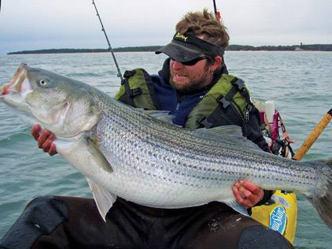 Kayak Fishing for Striped Bass with Live Eels – Nov 2009