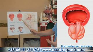 Leczenie prostaty skuteczność 99% Aliaksandr Haretski