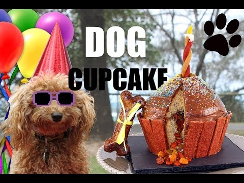 DOG CUPCAKES! Make a Giant Puppy Dog Cupcake – DIY Dog Food by Cooking For Dogs