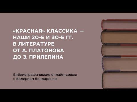 Библиографические онлайн-среды с Валерием Бондаренко «Молодёжь в литературе ХХ-XI вв.». Вып. 1